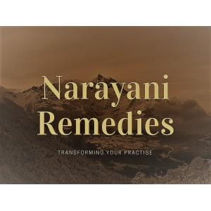 Narayani Seminar in North Cornwall