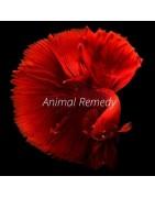 Animal Remedies
